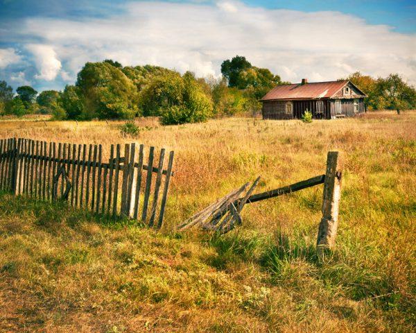 土地を相続放棄するかどうかを判断するためのポイントと手続きの流れ